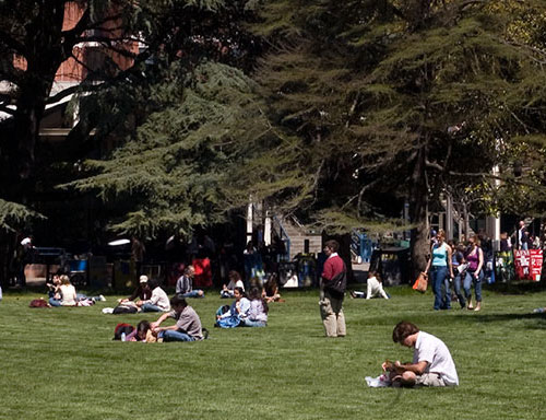 Students on the quad